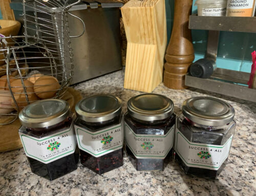 Show and Tell Fridays – Make your own Jam!